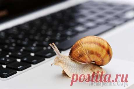 12 способов заставить интернет работать быстрее 12 способов заставить интернет работать быстрее Каждый день мы пользуемся интернетом на работе и дома, и наверняка многие из нас хотели бы, чтобы файлы и страницы загружались быстрее. Мы знаем, что кр...