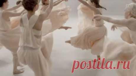 «Gramophone» Евгения Дога: Великолепная балетная постановка, в которой оживают цветы (ВИДЕО)