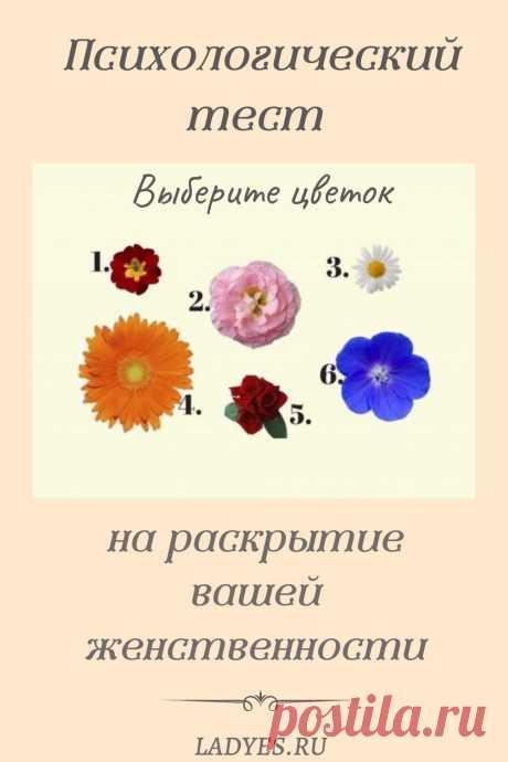 Найдется ли женщина, которая не любит цветы? Те, кто говорят, что они не любят, не совсем честны. Просто некоторые люди любят алые розы, другие любят милые букеты полевых цветов. Достаточно знать вкусы леди, чтобы угодить ей. Все, что вам нужно сделать, это просто выбрать цветок, и вы узнаете кое что интересное о вас или о вашей подруге.
