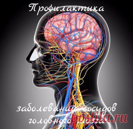 La profiláctica de las enfermedades de los vasos del cerebro