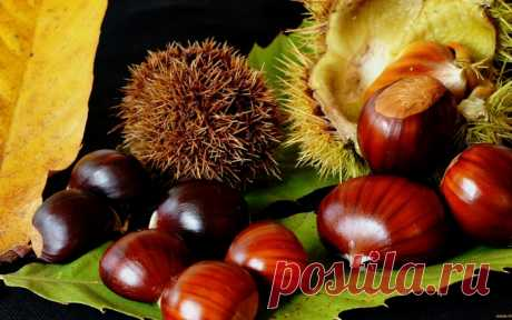 What it is possible to make of chestnuts