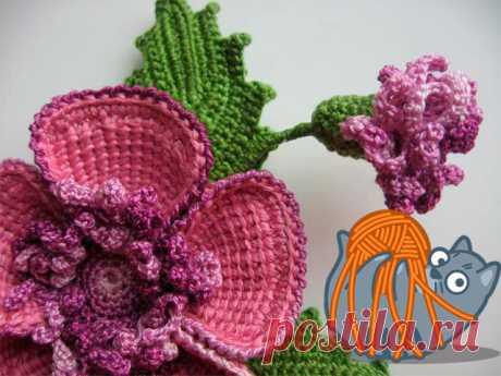 Вязание с крючком цветы для начинающих
