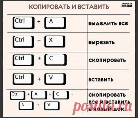 Азбука компьютерной грамотности