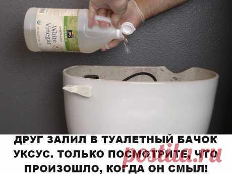 ОН ЗАЛИЛ В ТУАЛЕТНЫЙ БАЧОК УКСУС. ТОЛЬКО ПОСМОТРИТЕ, ЧТО ПРОИЗОШЛО, КОГДА ОН СМЫЛ! ПОЛЕЗНЫЕ СОВЕТЫ 1. Если налить уксус в бачок и смыть, он капитально почистит унитаз от грязи, бактерий и даже плесени. Плюс, можете проложить его