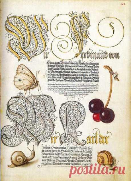 Mira calligraphiae monumenta (Образцовая книга каллиграфии).  George Bocskay - каллиграф, Joris Hoefnagel - иллюстратор. Вторая половина XVI века.