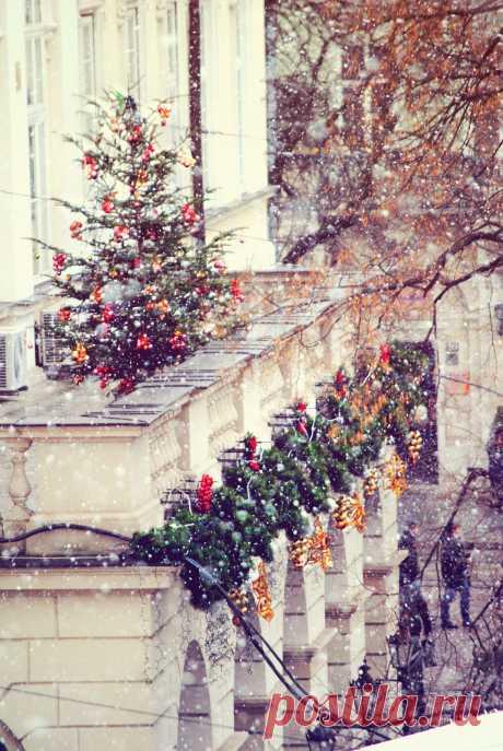 Сказочный,  неописуемо красивый  старинный город Львов приглашает на прогулку.И как знать, может быть именно вам он откроет свои вековые  секреты и приподнимет завесу  над давно забытыми  тайнами....