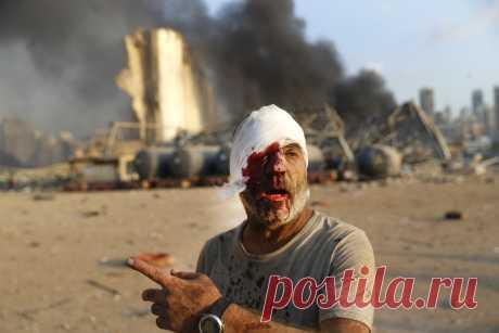 «Бейрут плачет» — vestinews