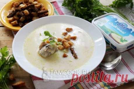 Сырный суп по-французски с курицей — рецепт с фото пошагово