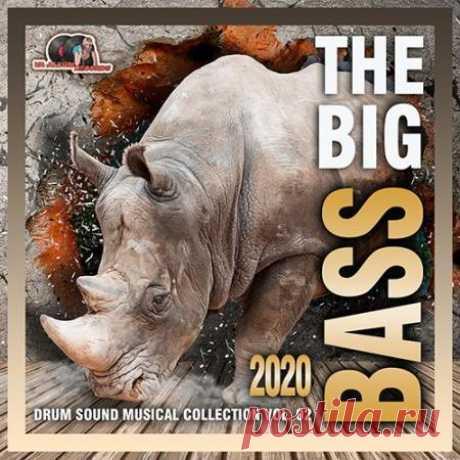 The Big Bass:Drum Sound Vol. 02 (2020) Придержите свои шляпы и шляпки, иначе ураган басов сорвёт их с Вашей головы. Музыка лонгплея подарит Вам отличное настроение и доставит отличные эмоции. А если вы являетесь истинным поклонником электро басс музыки, то здесь вы найдёте для себя много интересного!Категория: CompilationИсполнитель: