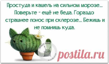 Позитивные фразочки в картинках