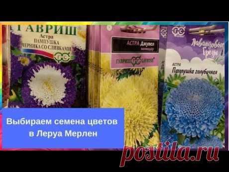 Садовые цветы: Выбираем семена цветов в Леруа Мерлен