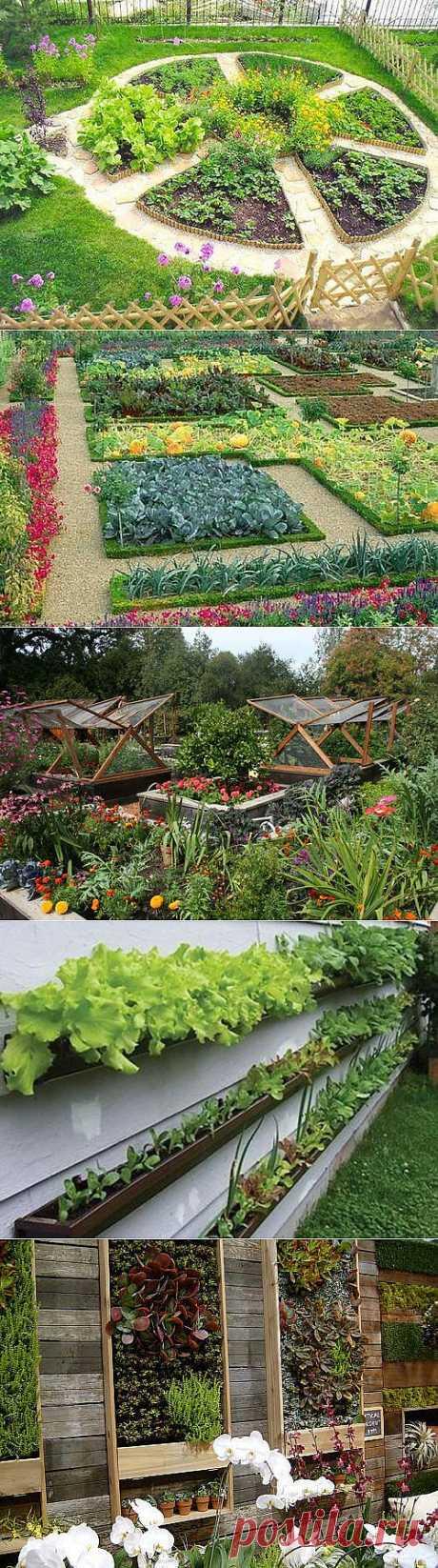 Декоративный огород: как сделать красивые грядки | Дом Мечты