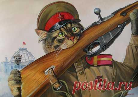 Los Gatos épicos ☺ \/ A.Zavaly