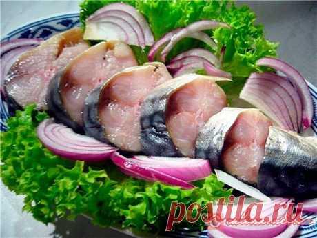 Скумбрия соленая рецепт   Рыба слабого посола