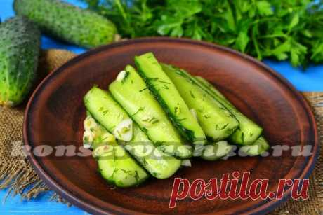 Fresh-salted cucumbers in the dry way in a package