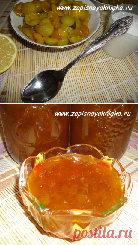 Recipes of jam from plums jam
