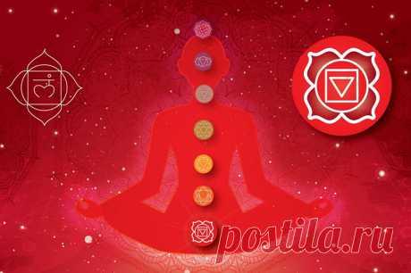 Муладхара чакра: значение и связь с физическим телом, дисбаланс энергетического центра, как восстановить и прокачать