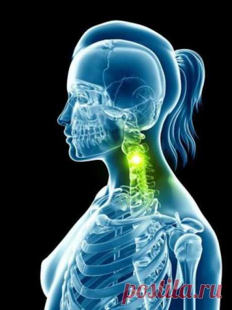 Упражнения для шеи: Освобождают от зажимов и нормализуют давление.           Следующие упражнения предназначены для расслабления напряжённых мышц шеи и все вместе должны занимать 4–5 минут в день.           Эти 5 упражнений предназначены для расслабления напряжённых …