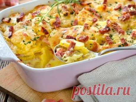 Картофельная запеканка с сосисками в духовке — Sloosh – кулинарные рецепты