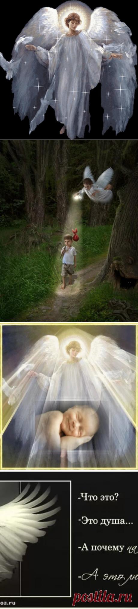 картинка я верю в ангелов: 11 тыс изображений найдено в Яндекс.Картинках