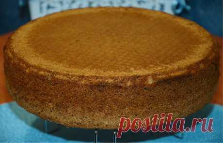 Шоколадный бисквит для будущего торта...