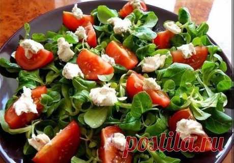 Легкий салат с томатами и мягким козьим сыром — Мегаздоров