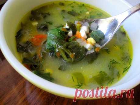 Научилась варить щавелевый суп без щавеля. Отличный осенне-зимний вариант   Отчаянная Домохозяйка   Яндекс Дзен