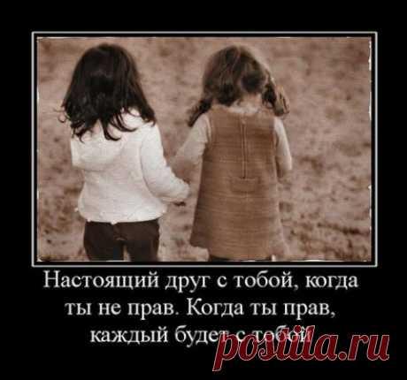 /Запомни, не бывает сто друзей... / Когда ты в бриллиантах и шелках,  Друзья тебя качают на руках.  Когда ты покупаешь им вино,  Они с тобой смеются заодно…  Ты делаешь подарки, к ним спешишь.  Волнуешься и дружбой дорожишь.  Приходишь, помогаешь им в беде…  Ты плачешь… А друзья сегодня где?  Когда не в бриллиантах, а в долгах…  Когда не над землёю, а в ногах,  То присмотрись, кто рядышком с тобой,  Вот это друг, подаренный судьбой.  А те, кто хохотали в унисон  И тратили с тобою миллион,  С