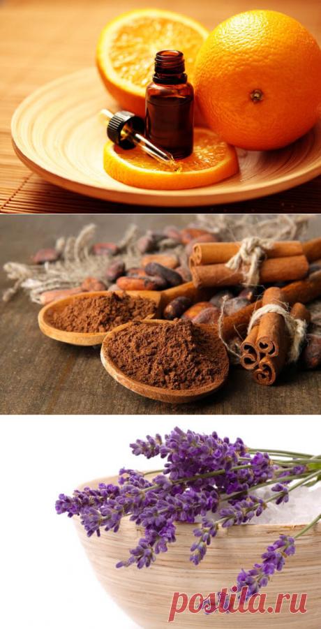 5 запахов, которые способны исцелять. Доказано наукой! | В темпі життя