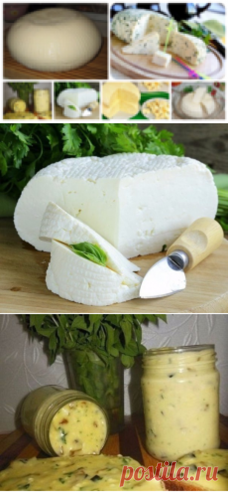 Cottage cheeses: 15 ways of preparation