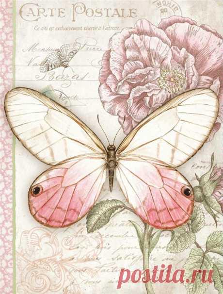 «Картинки для декупажа в хорошем качестве: бабочки - одна из самых востребованных разновидностей изображений. которые мастерицы используют в творчестве.» — карточка пользователя Татьяна С. в Яндекс.Коллекциях