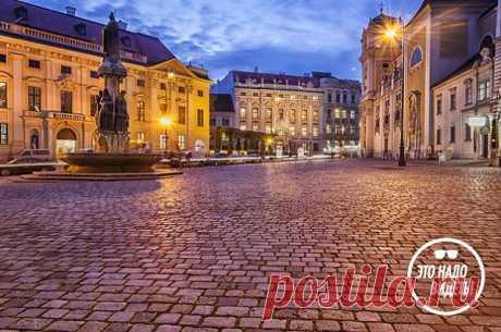 Это надо видеть: секретные места Вены, которые вы не найдете в типичном путеводителе | Очкарик