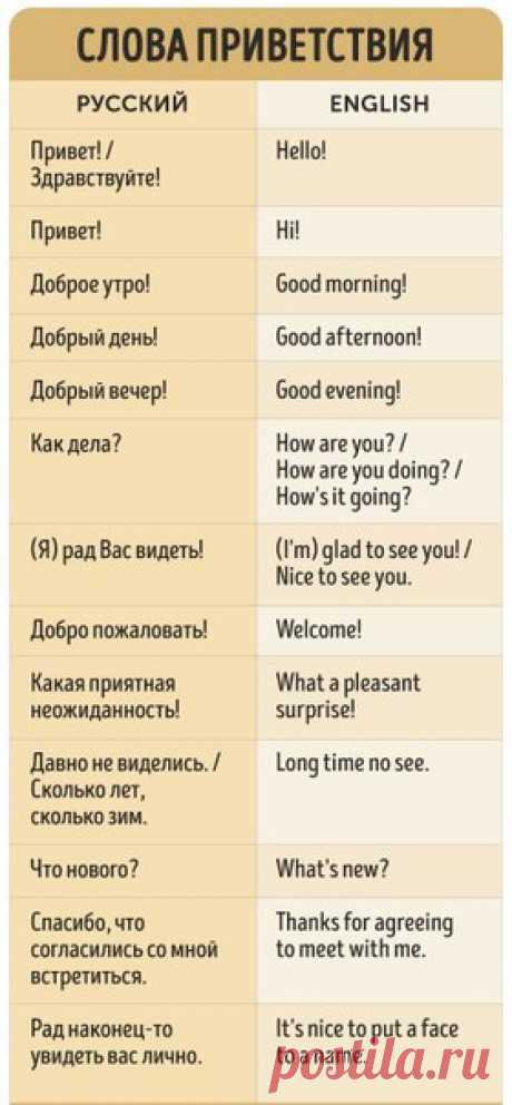 7 способов быть вежливым на английском языке (Сохраните, чтобы не потерять!)