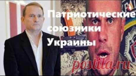 Патриотические союзники Украины