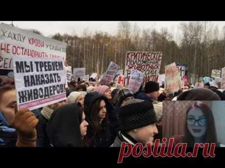 НОВЫЙ закон в России - ПЛЯСКИ на костях - YouTube