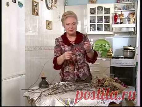 "Наталя Земна - Береза 1 - ""Ранок. Домашній лікар"""