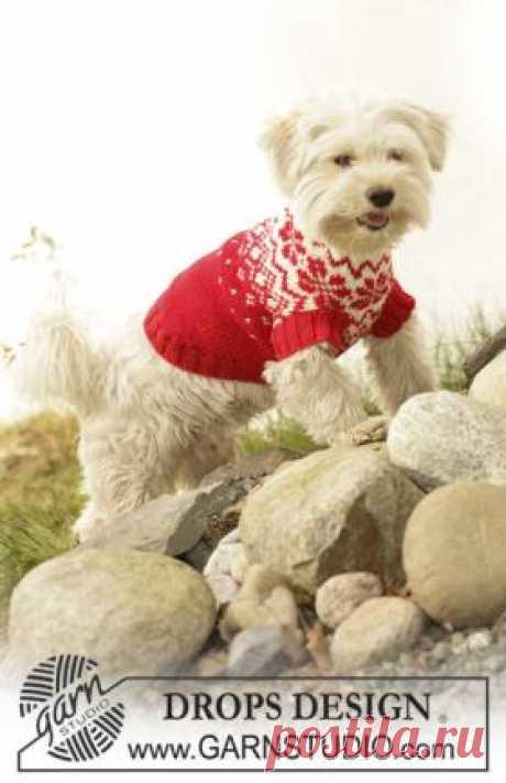 Пальто с норвежским узором Яркое пальто для вашей любимой собаки, связанное на спицах. Изделие украшено норвежским жаккардовым узором. Описание дано для трех размеров...
