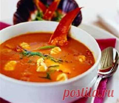 Супы с сыром — быстро и просто