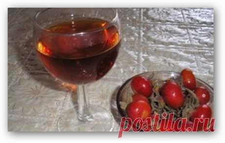 Домашнее вино из шиповника