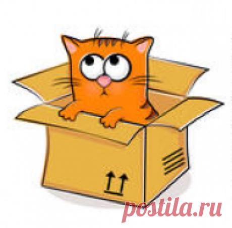 KotoMail.ru