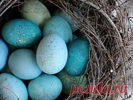 Волшебный способ окрашивания пасхальных яиц