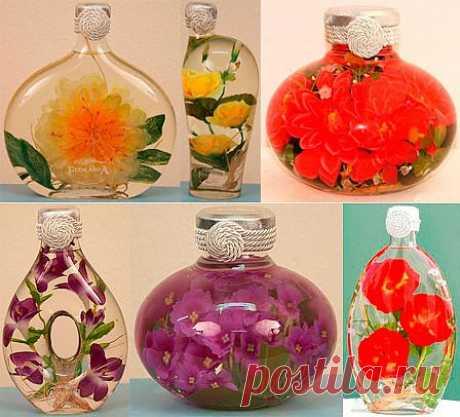 Как сохранить живые цветы – консервирование в глицерине .