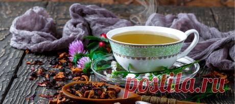 Схраните здоровье вашего кишечника | Здоровье&красота | Яндекс Дзен