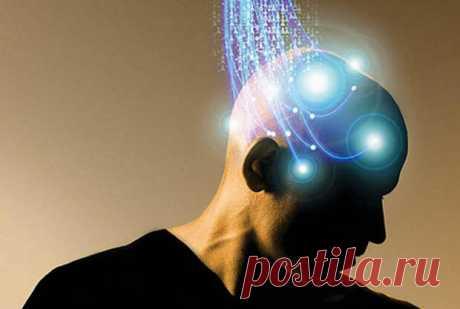 60 советов для улучшения работы мозга | ПолонСил.ру - социальная сеть здоровья