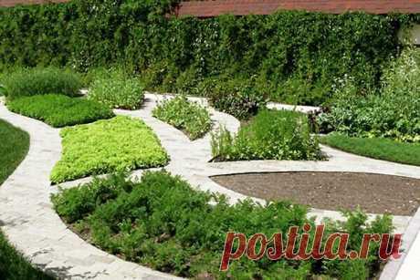 Decorative kitchen garden: ideas of registration of beds