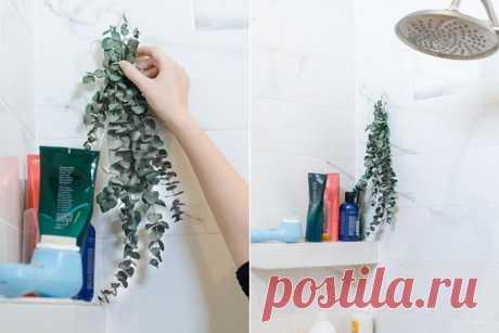 Без «химии»: 15 простых и бюджетных способов, как наполнить квартиру и авто приятным ароматом Запахи влияют на нас куда сильнее, чем нам кажется. К примеру, доказано, что именно аромат создаёт ощущение домашнего уюта. Сколько не расставляйте статуэтки и не обвешивайте стены фотографиями, если ...