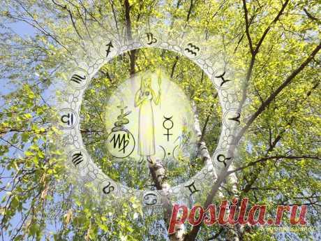Гороскоп на период с 30 марта по 3 мая 2020 по неделям для Девы | Астропропаганда | Яндекс Дзен ♍✨ Автор: астролог Нина Стрелкова. ✧ Неспокойный период, когда Солнце затрагивает сферу кризисов и страстей. Напряженные аспекты Меркурия, управителя вашего знака, тоже могут вызвать у вас жажду деятельности, стремление к удовлетворению своих страстных желаний. В первой декаде апреля Меркурий активизирует область длительных отношений, вносит в них элемент тайны и романтики...