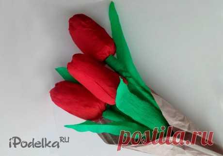 В этом уроке я покажу как сделать тюльпаны из бумаги своими руками с пошаговыми фотографиями. Это тюльпаны и гофрированной и цветной бумаги, а также цветы тюльпанов в технике оригами.