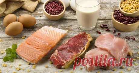Замена животных белков растительными продлевает жизнь