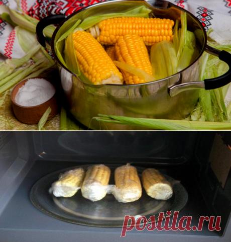 Как правильно и вкусно приготовить кукурузу в микроволновке, сварить в воде и молоке. Детям нравиться😋   DV.VETROFF   Яндекс Дзен